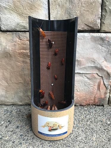 Bearded Dragon 4 Inch Adult Grid Feeding Cup