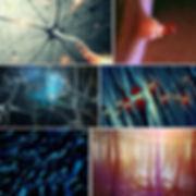 Biology_6images.jpg