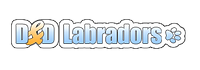 dd_logo.png