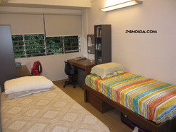 paying guest accomodation in noida sector 62