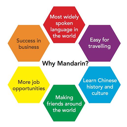 MandarinBrain.png