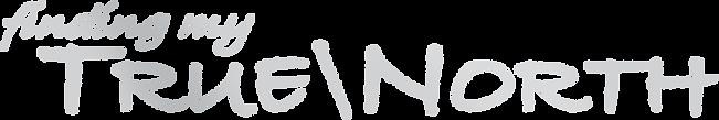 findingmytruenorth-logo&star-silver.png