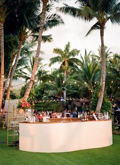 Darby-Evan-Hawaii-1075.jpg