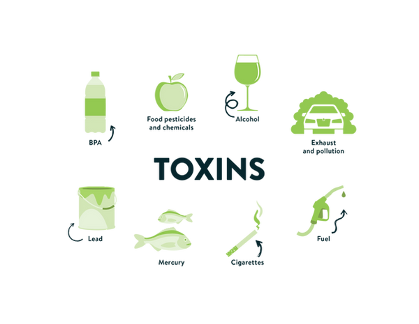 Toxins-infographic-1024x794.png
