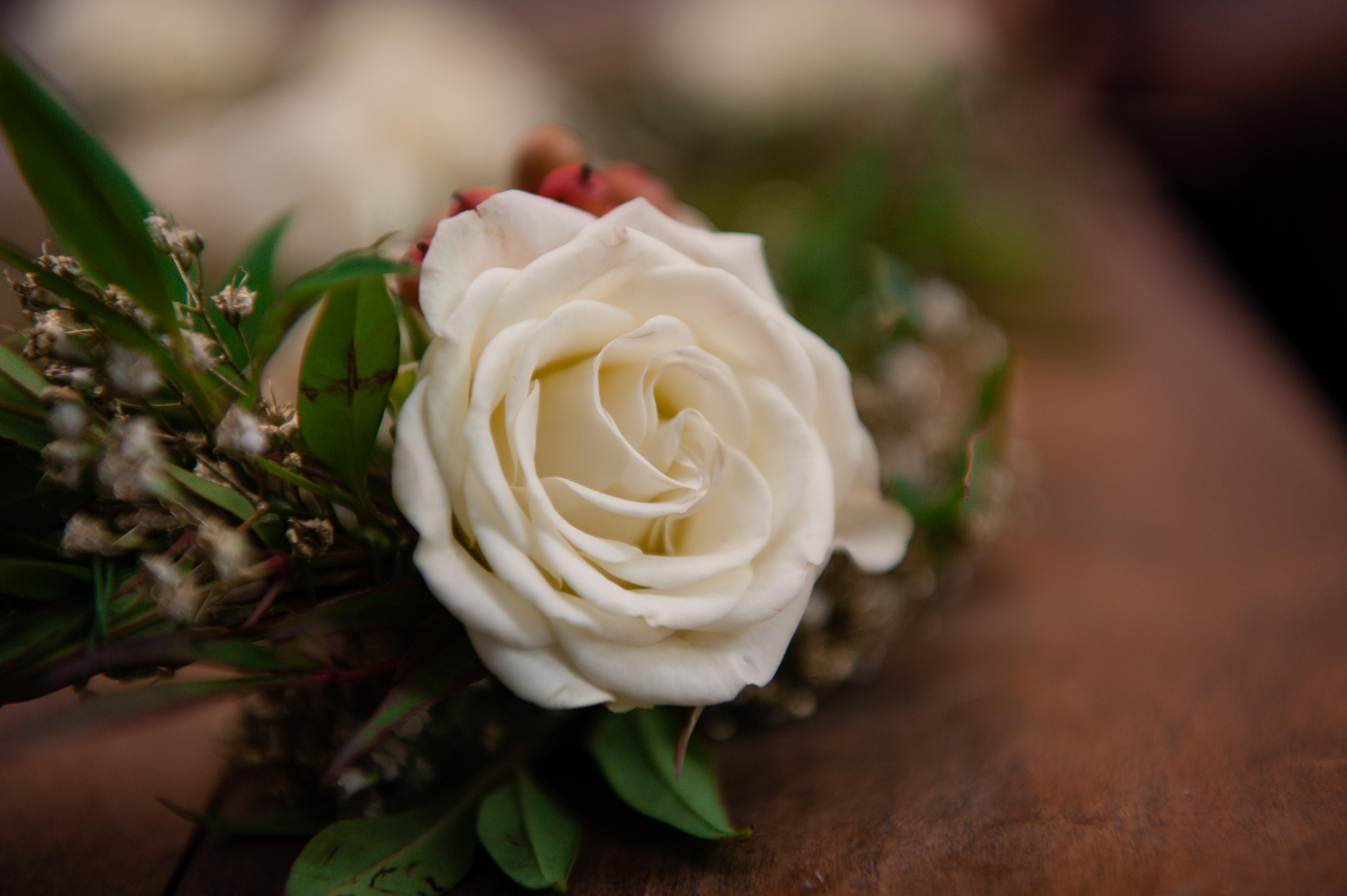 Leer Wedding-113