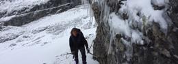 Eiszapfen am Weg
