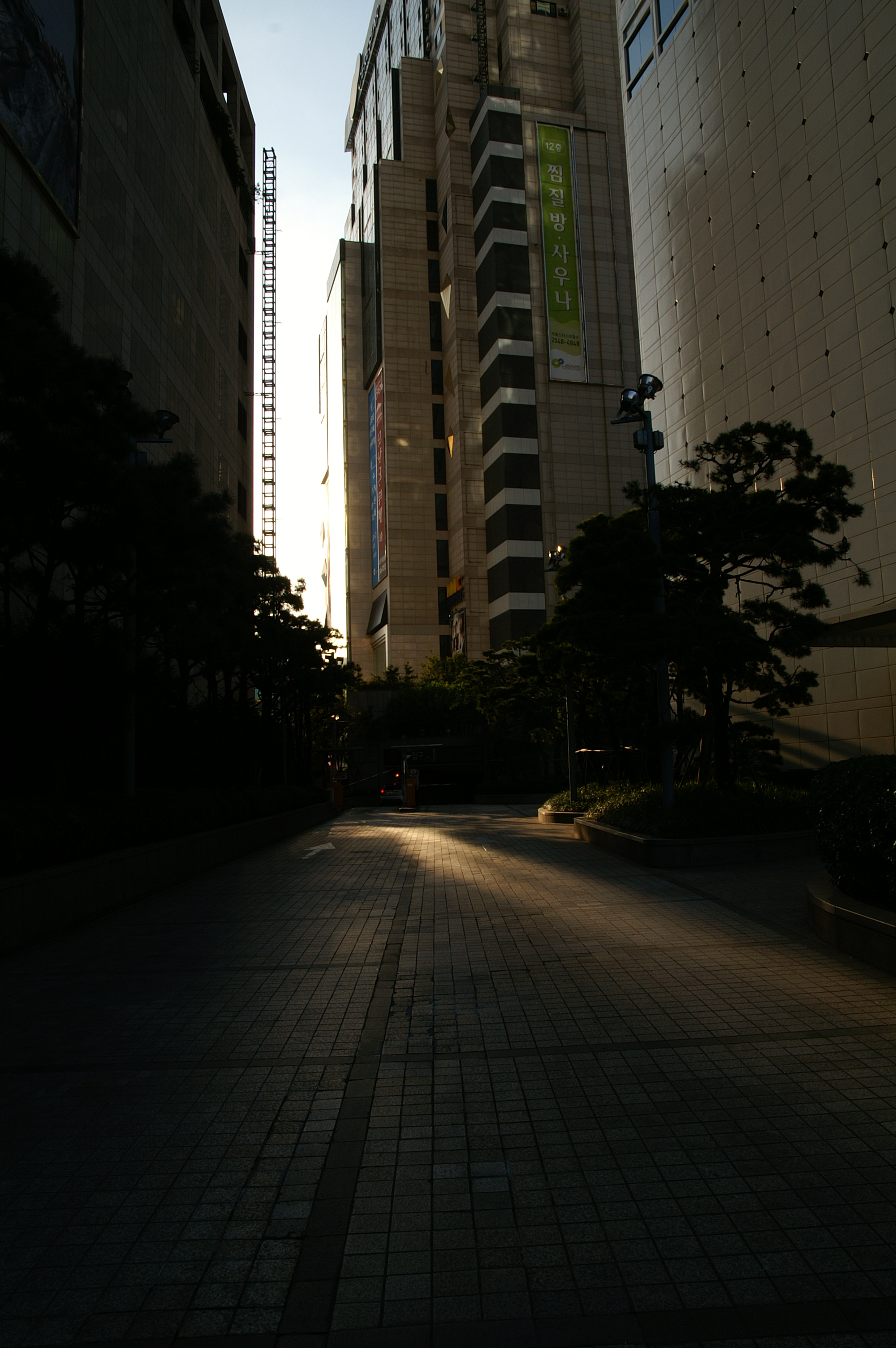PICT0248