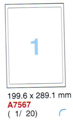 Aneos Computer Printer Label 電腦打印標籤(透明) 2