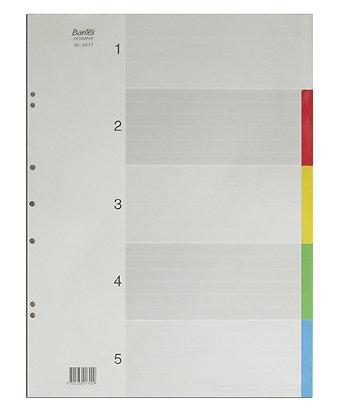 Bantex A3 PVC colour index 膠質顏色分類紙