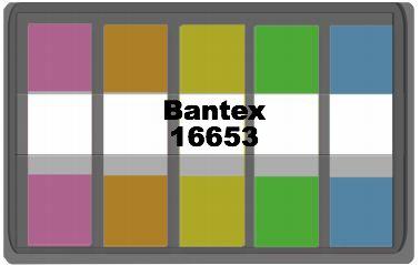 Bantex Sticky Notes 雙色膠質長條形抽取式旗仔
