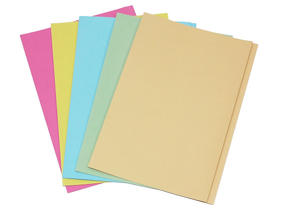 paper folder 紙文件套 A4/ F4