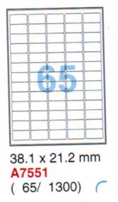 Aneos Computer Printer Label 電腦打印標籤(透明) 1