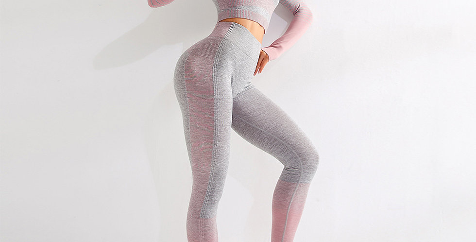 Seamless Leggings 2 Pieces Set