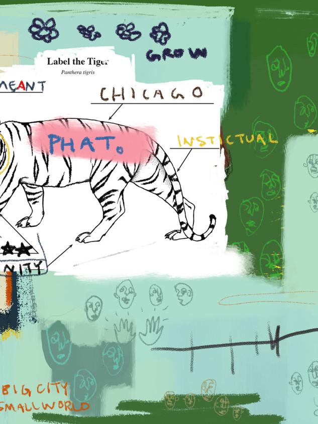 fat tiger make a statement ADRIANA MIRAN