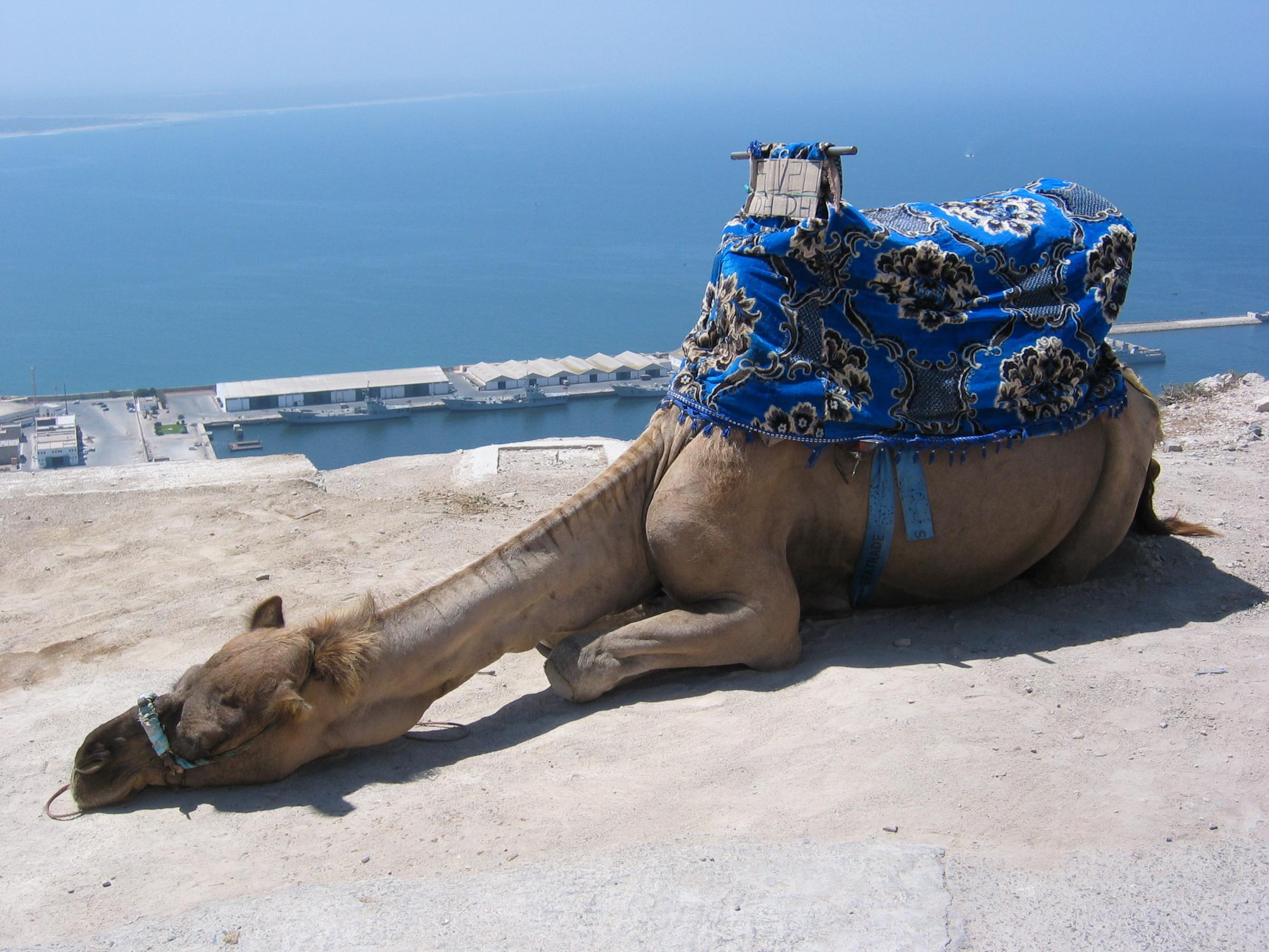 Westsahara ab Agadir