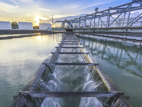 Rating the taste of recycled water