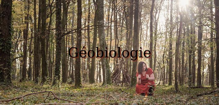 Géobiologue