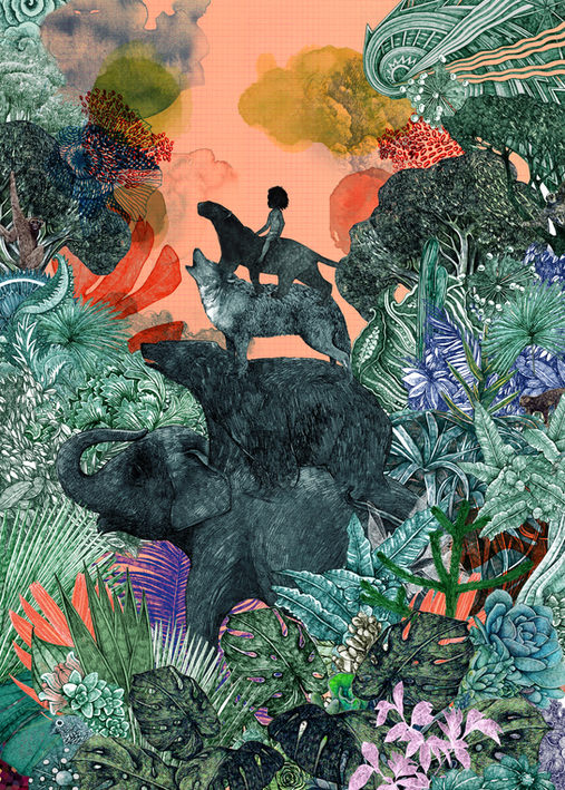 The Jungle Book series, shortlisted for the Illustration World Award