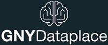 Dataplace logo for quadrant on website.j