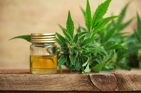 bigstock-Cannabis-Oil-And-Hemp-205317244