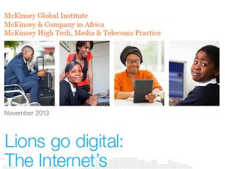 "McKinsey ""Lions Go Digital"" Report"