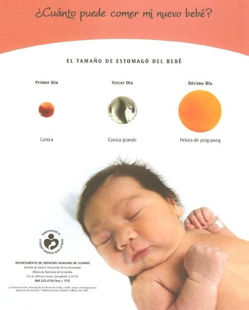 El Tamano de Estomago del Bebe