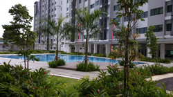 Rafflesia & Ixora - Pool