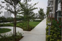 First Residence - Walk Path