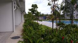 Rafflesia & Ixora - Pool Garden