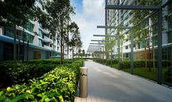 Z Residence - Roof Garden Walk Path