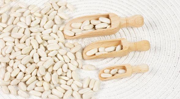 Egyptian White Kidney Beans