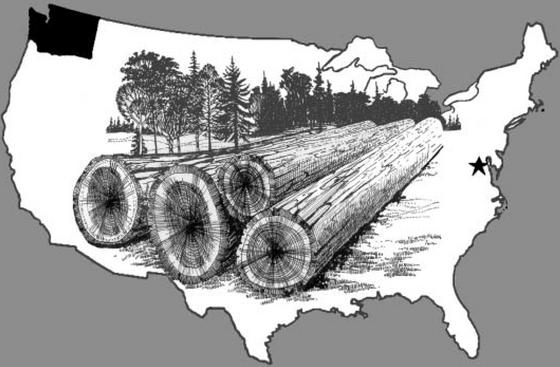 美国原木体积从千板尺到立方米