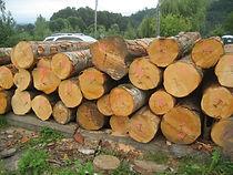 赤杨,美国原木