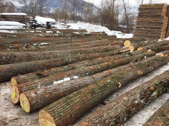 欧洲木材海运费翻了三倍!是否还有竞争优势?
