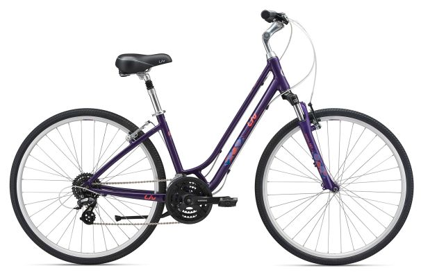 Flourish FS-1 Comfort Bike