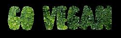 vegan-1433237_960_720.png