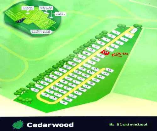 cedar wood 09 02 2020.jpg