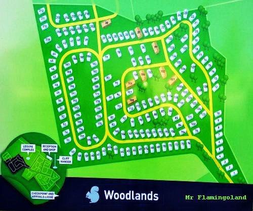 flamingoland woodlands.jpg