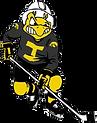 University of Iowa Women's Hockey