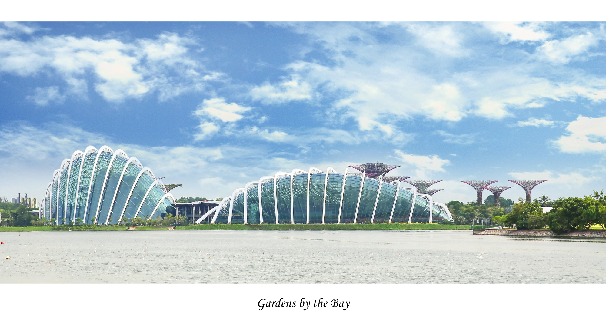 Gardens by the Bay, Architecture Photography