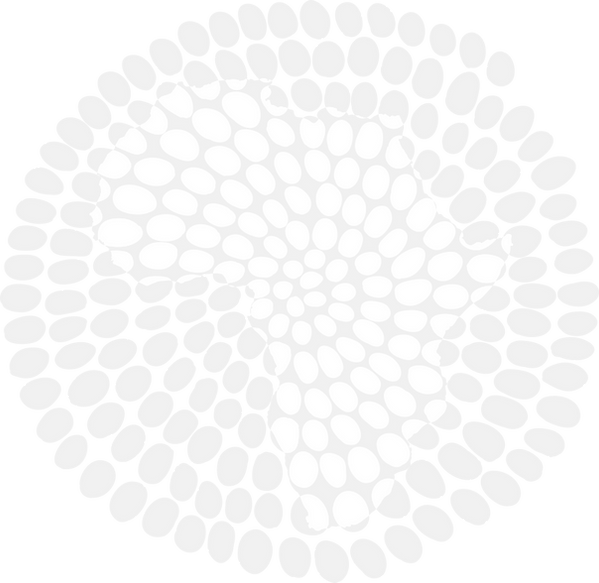 Fundo logo.png