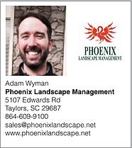 Phoenix Landscape.png