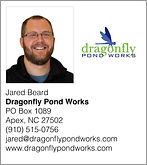 Dragonfly Pond Works.001.jpeg