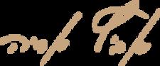 לוגו - סטודיו לצילום אריה אביץ