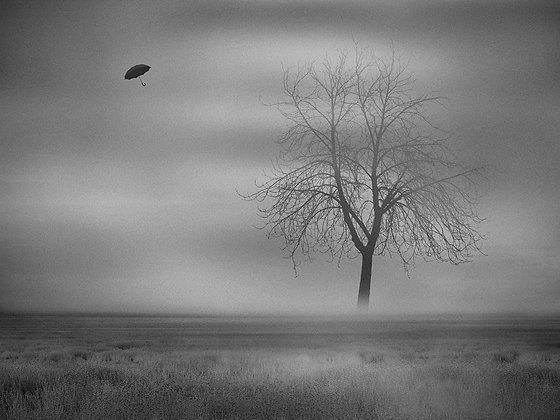 """""""Niebla en Ask"""""""