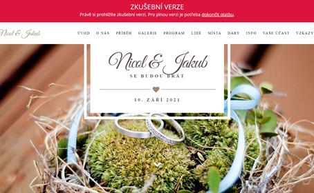 Svatební web nebo neplacené platformy? SVATEBNÍ WEB, ROZHODNĚ ANO!