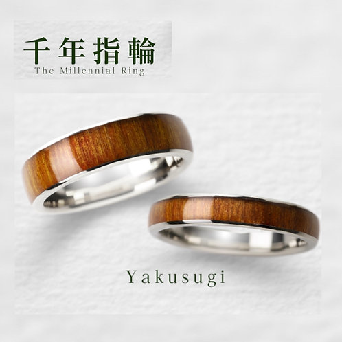 【貸出し】千年指輪  屋久杉