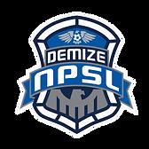 Demize NPSL logo clear.png