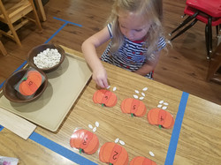 counting pumpkig seeds scarlet