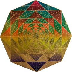 Octagon Tracerlust 17